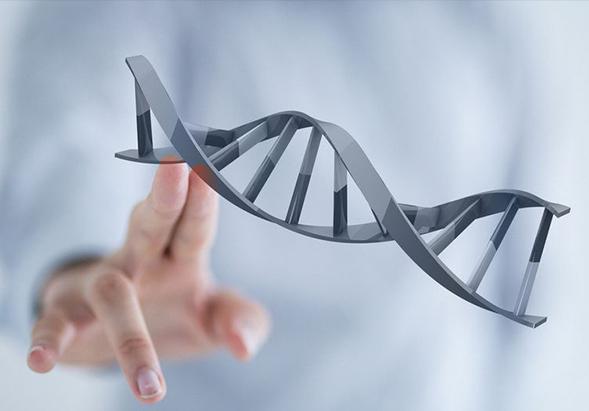 上海科医联创生物科技有限公司开展分子诊断相关的肿瘤风险评估、预测预警、早期筛查、分子分型、个体化治疗、疗效和安全性预测及监控等精准个体化检测方案,提高医院的临床分子检测水平,并由此提高医院的临床诊疗和临床科研水平。