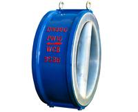 Lining dual plates check valve