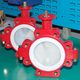 PTFE Lining Butterfly valve