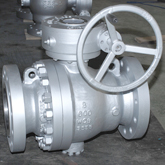600Lb Trunnion ball valve show