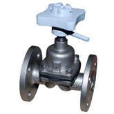Stainless Steel PTFE Diaphragm Valve Show