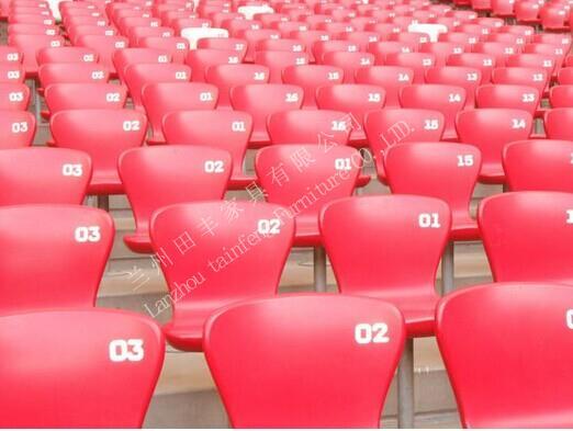 体育场看台