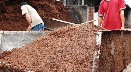 窖泥封坛酒窖泥的价格需要多少钱?