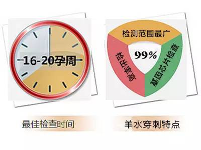 香港无创DNA检测