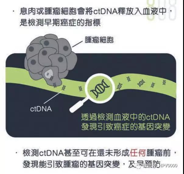 ctDNA檢測早期癌癥指標