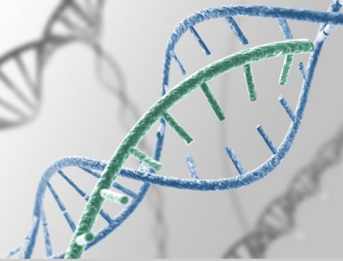 高發病遺傳性癌症基因檢測