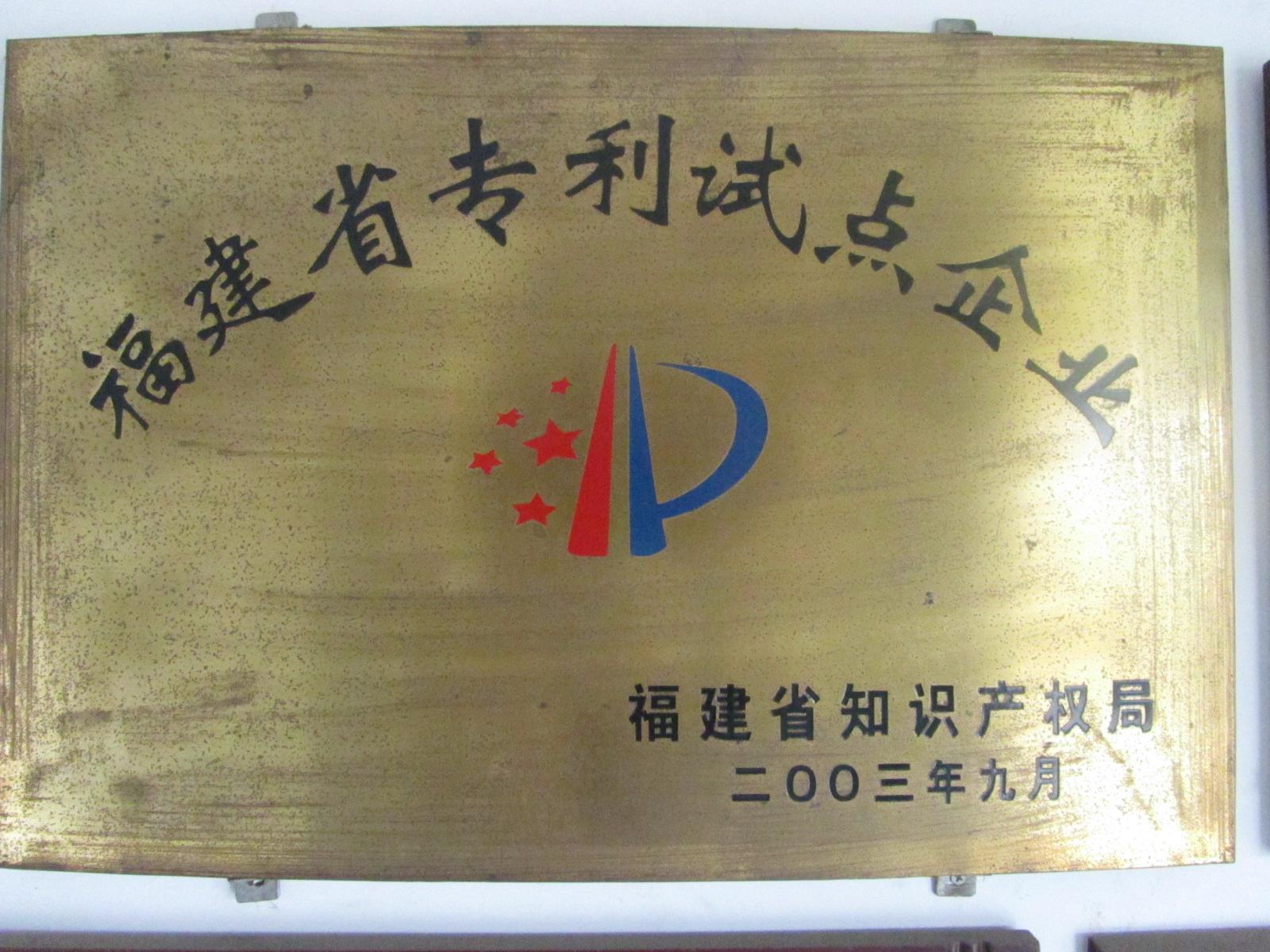 2003年9月丰力粉碎机被福建省知识产权局认定为福建省专利试点企业。