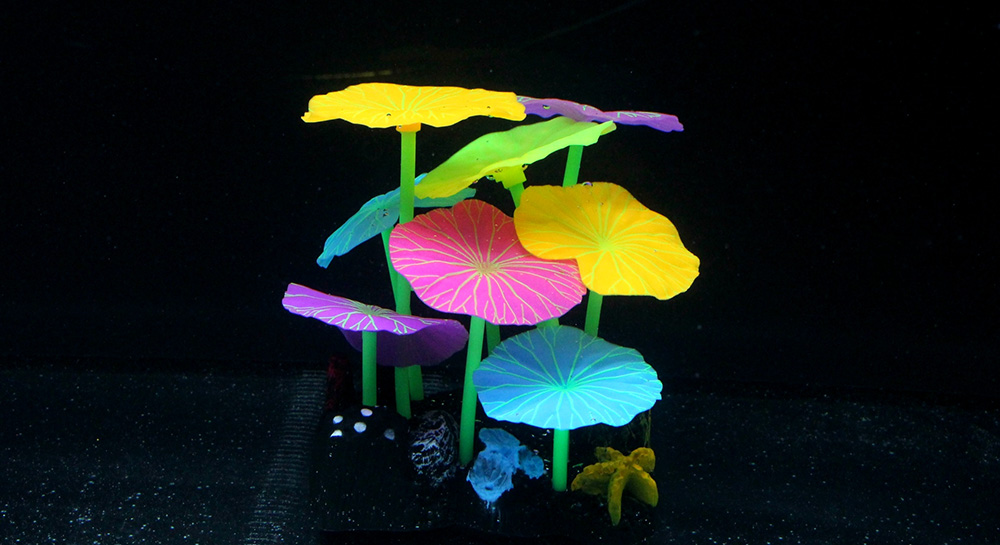 Picture of Colored Lotus Leaves 9 Pieces