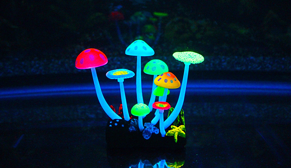 Picture of Mushroom TypeH -9 pieces