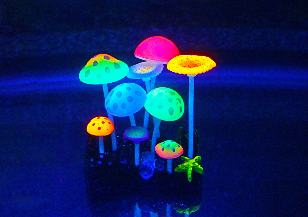 Picture of Mushroom Type1 -9 pieces