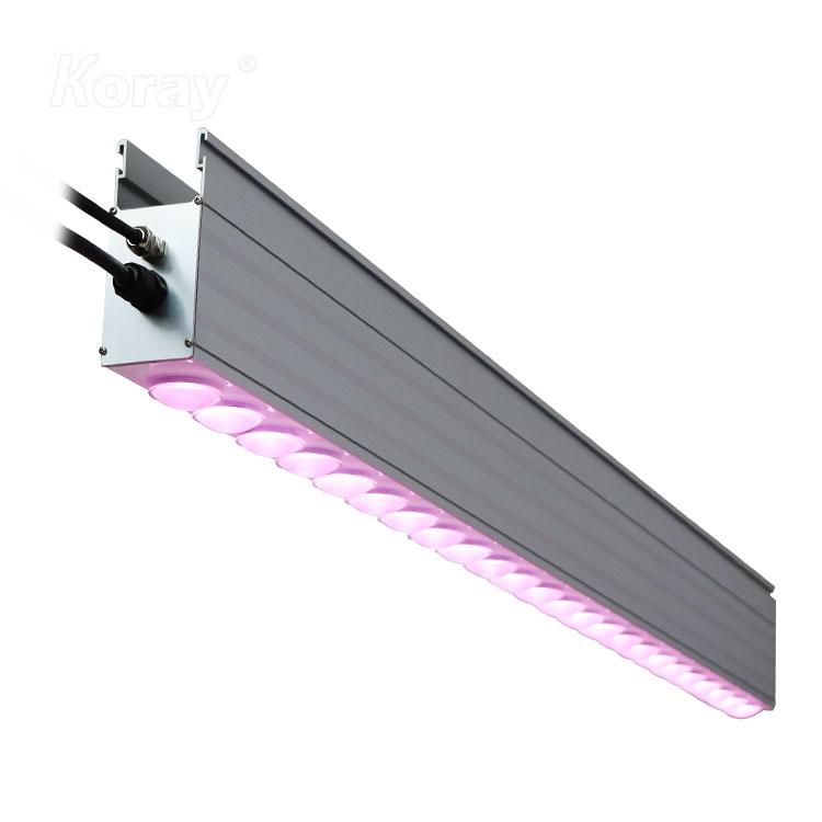 RX-TP12050大棚植物灯高功率顶光植物补光模组