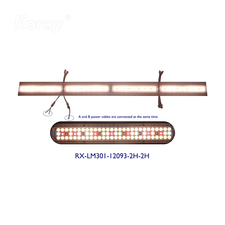 RX-LM301-12093-2H双通道药用植物灯