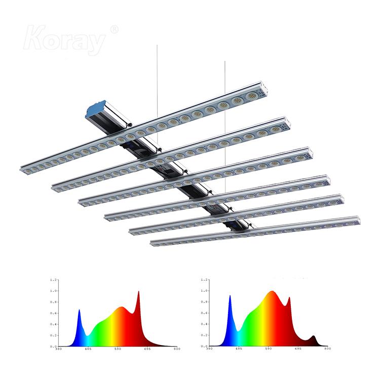 RX-G5025-K6 经济型顶光药用植物模组灯条及阵列灯