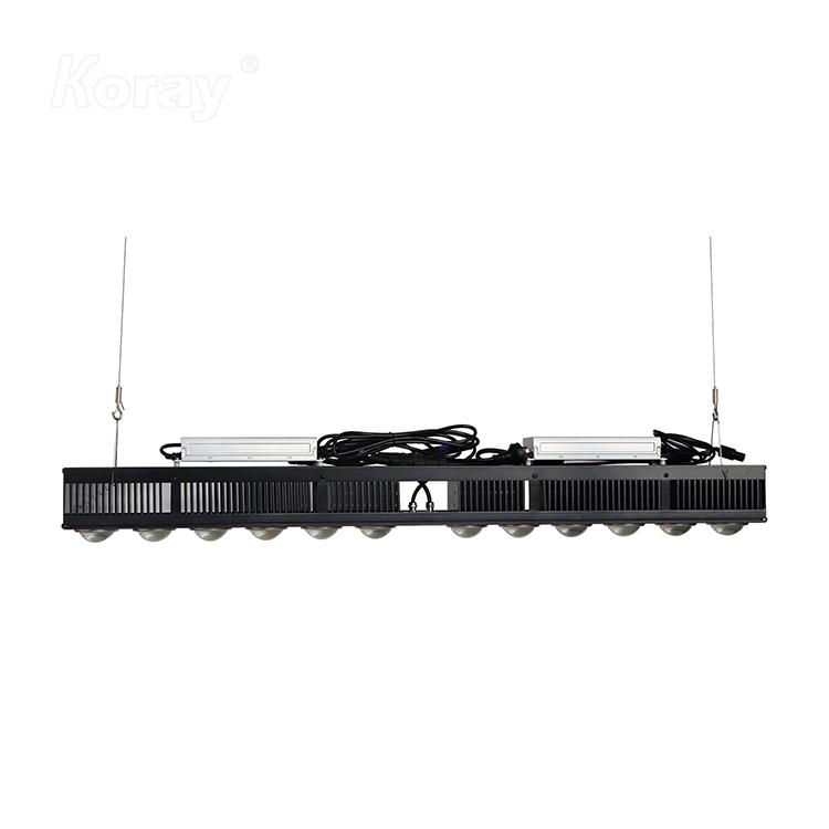 RX-G600T500W高功率大棚种植植物灯顶光模组园艺LED药用植物灯