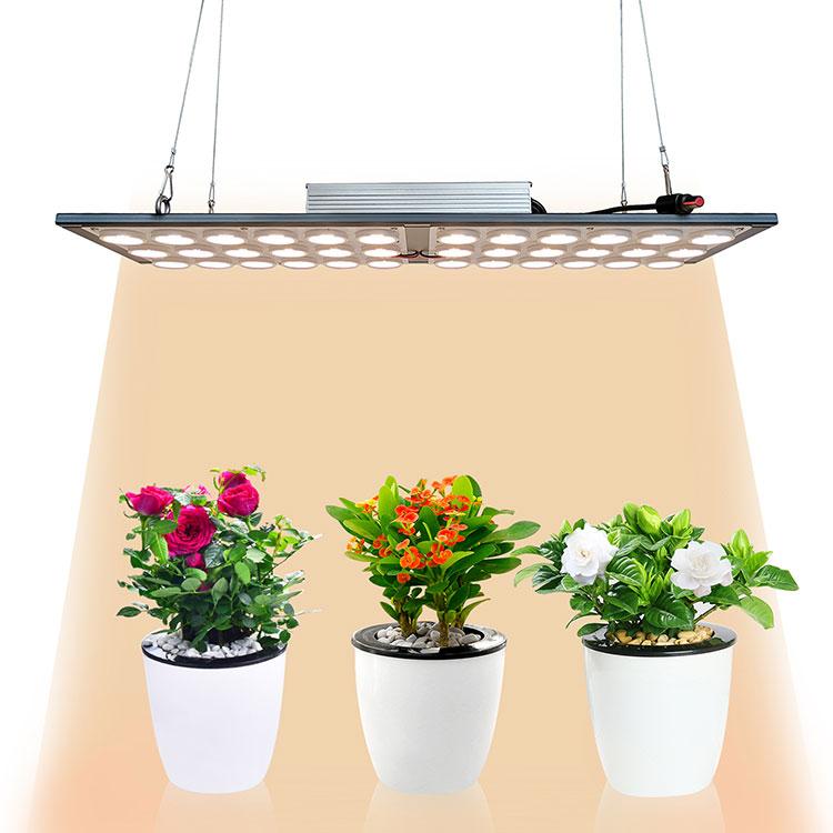 RX-LM301H-OS-k2 高效率药用量子植物灯模组LED园艺植物灯