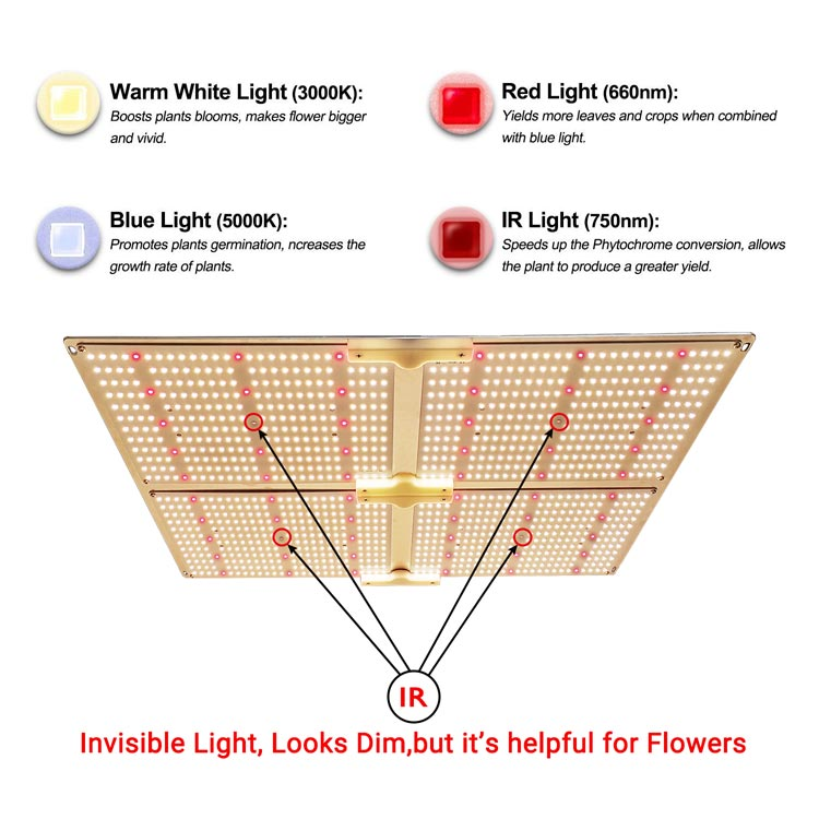 RX-G4000高效率药用量子植物灯模组太阳光园艺植物灯